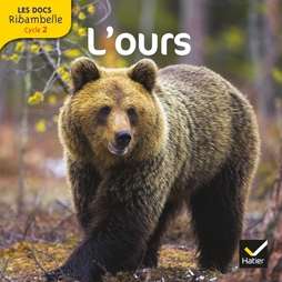 Les Docs Ribambelle Cycle 2 - L'ours - Manuel interactif